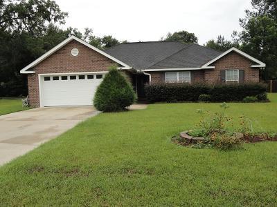 Ludowici Single Family Home For Sale: 147 Woolard Way NE
