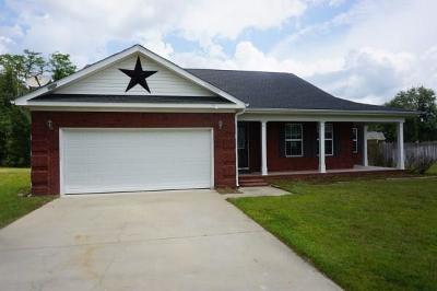 Ludowici Single Family Home For Sale: 44 NE Vicki Court