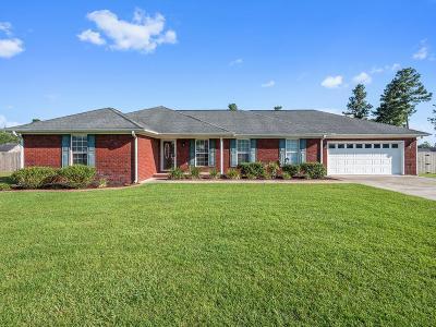 Ludowici Single Family Home For Sale: 61 Jackson Avenue NE