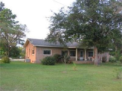 Hortense Single Family Home For Sale: 7459 Highway 32