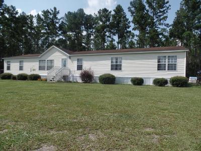 Ludowici Single Family Home For Sale: 203 NE Caldwell Road