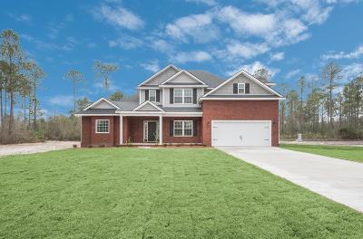 Hinesville, Ludowici Single Family Home For Sale: 262 Vickers Road SE