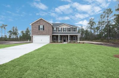 Ludowici Single Family Home For Sale: 234 Vickers Road SE