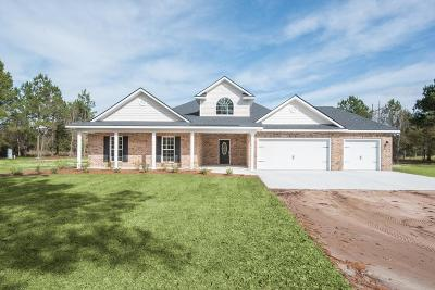 Hinesville, Ludowici Single Family Home For Sale: 2717 Highway 57