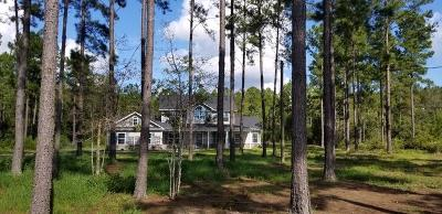 LUDOWICI Single Family Home For Sale: 550 Quail Drive NE