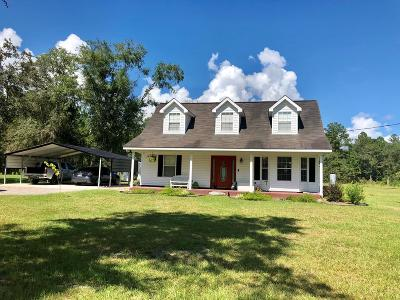 LUDOWICI Single Family Home For Sale: 936 King Road SE