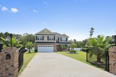 LUDOWICI Single Family Home For Sale: 123 Thornbrush Court NE