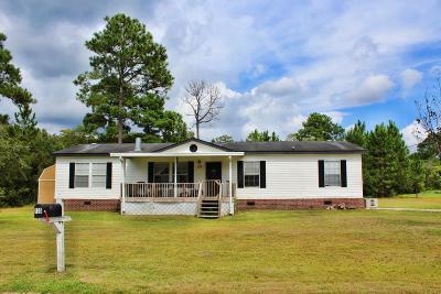 Ludowici Single Family Home For Sale: 135 Willow Lane NE