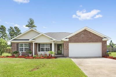 LUDOWICI Single Family Home For Sale: 165 Jackson Avenue NE
