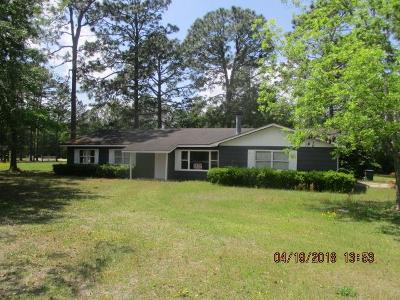 Jesup Single Family Home For Sale: 195 Powerline Drive