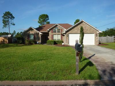 LUDOWICI Single Family Home For Sale: 127 Burnt Pines Road NE