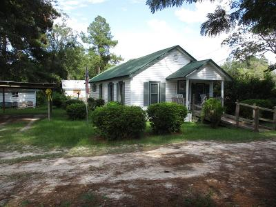 Ludowici Single Family Home For Sale: 55 Bessie Gordon Lane SE