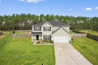 Hinesville, Ludowici Single Family Home For Sale: 250 Pine View Drive SE