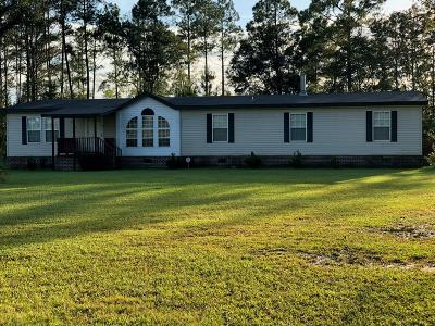 LUDOWICI Single Family Home For Sale: 6643 Cecil Nobles Highway