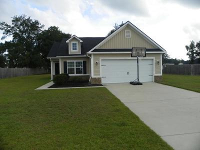 LUDOWICI Single Family Home For Sale: 175 Cumberland Drive NE