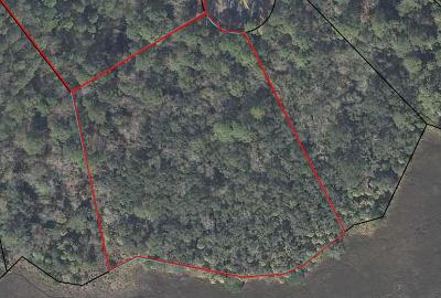 Residential Lots & Land For Sale: 190 Bluebill Trail