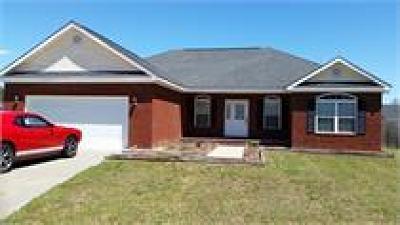 Ludowici Single Family Home For Sale: 79 Cherie Lane NE