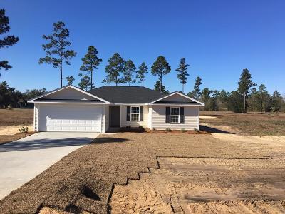 Jesup Single Family Home For Sale: 23 Indigo Lane