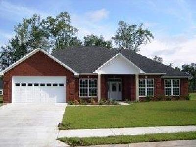 Hinesville Single Family Home For Sale: 717 English Oak Drive