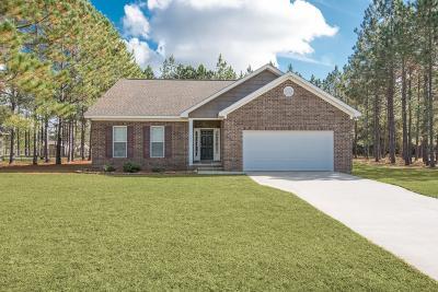Ludowici Single Family Home For Sale: 212 Kalynne Way NE