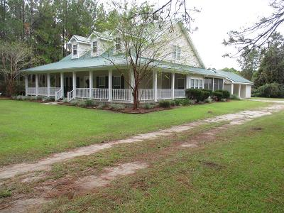 Ludowici Single Family Home For Sale: 1737 Pearl Davis Road NE