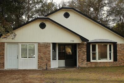 Hinesville Single Family Home For Sale: 784 Madison Drive