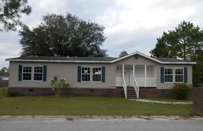 Ludowici Single Family Home For Sale: 14 Huckaberry Lane