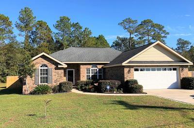 Ludowici Single Family Home For Sale: 334 Deloach Drive NE