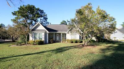 Jesup Single Family Home For Sale: 180 Palm Island Circle