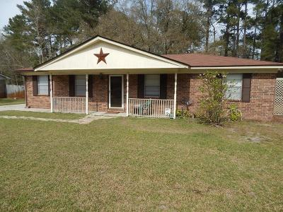 Hinesville Single Family Home For Sale: 228 Thiess Branch Drive