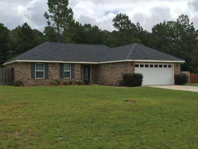 Ludowici Single Family Home For Sale: 189 Carson Street NE