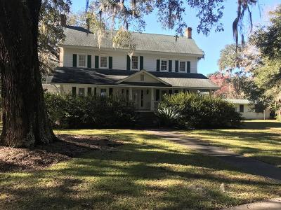 Ludowici Single Family Home For Sale: 1042 Jones Creek Loop