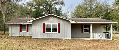 Jesup Single Family Home For Sale: 154 John Smith Road