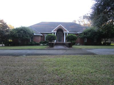Richmond Hill, Allenhurst, Hinesville, Midway, Walthourville, Glennville, Jesup, Screven Single Family Home For Sale: 777 Long Ford Road