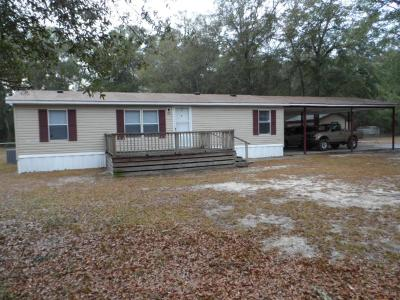 Jesup Single Family Home For Sale: 749 Fannie Head Road