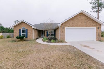 Ludowici Single Family Home For Sale: 117 Miller Street NE