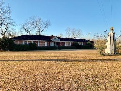 Tattnall County Single Family Home For Sale: 709 Highway 144 East