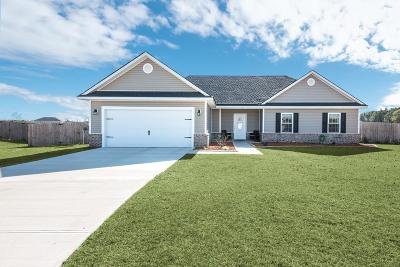 Hinesville, Ludowici Single Family Home For Sale: 197 White Oak Drive NE