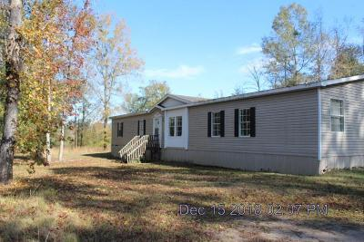 Midway Single Family Home For Sale: 6300 Oglethorpe Hwy