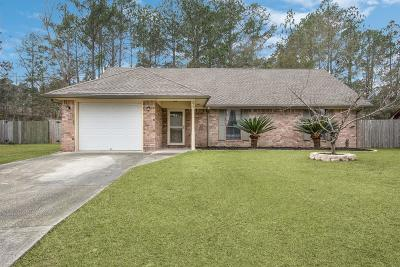 Hinesville Single Family Home For Sale: 715 Little John Drive