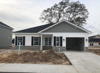 Hinesville Single Family Home For Sale: 396 Alcott Circle