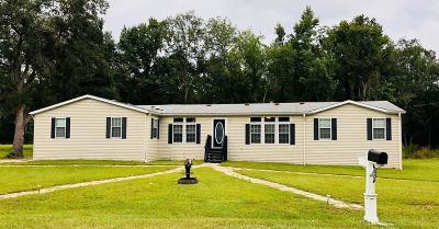 Riceboro Single Family Home For Sale: 42 H. Williams Lane