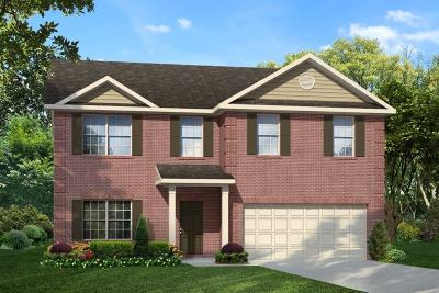 Ludowici GA Single Family Home For Sale: $214,995
