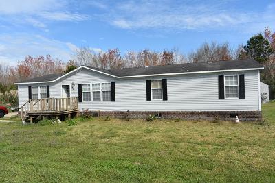 Ludowici Single Family Home For Sale: 438 Persimmon Boulevard NE
