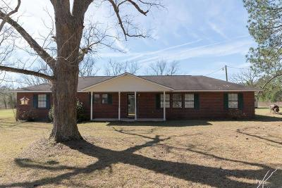 Tattnall County Single Family Home For Sale: 173 Strickland Street