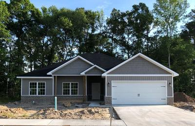 Hinesville Single Family Home For Sale: 300 Fairview Circle