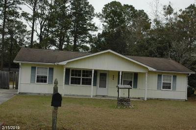 Hinesville Single Family Home For Sale: 646 Lee Road
