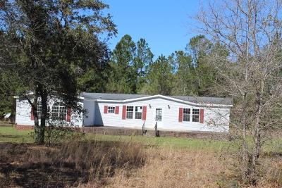 Hinesville Single Family Home For Sale: 27 Delk Road