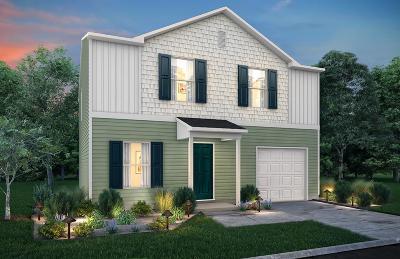 Hinesville Single Family Home For Sale: 207 Telfair Drive