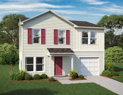 Hinesville Single Family Home For Sale: 221 Telfair Drive